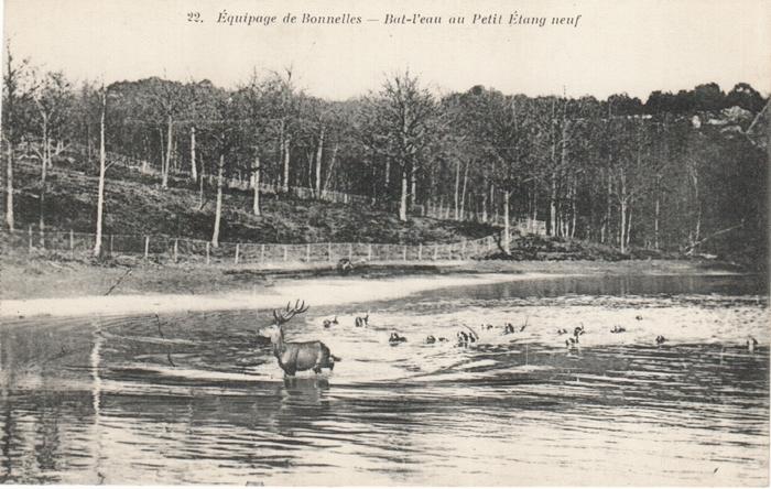 Equipage de Bonnelles Rambouillet (11)
