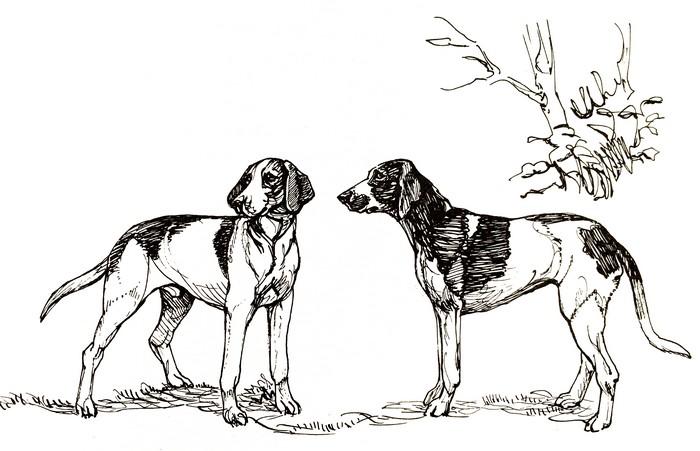 Noctambule et Quiproquo - Illustration tirée de l'ouvrage Écoute en tête de J. Bost-Lamondie (Édition de 1990)