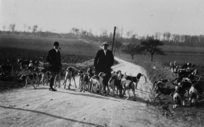 Le duc de Westminster promenant ses chiens - Collection particulière - Don à la Société de Vènerie - M. M. Berge