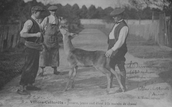 L'Equipage Menier - Collection A.-P. Baudesson - Don à la Société de Vènerie - 525