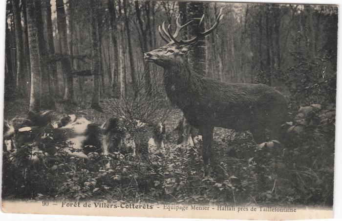 Cartes postales - Claude Alphonse Leduc (4)