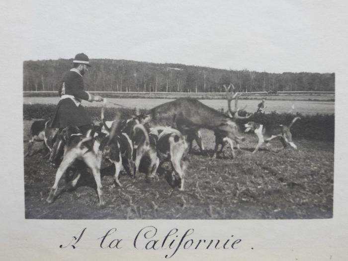 Equipage de Bonnelles - 1880 - 1900 (2)