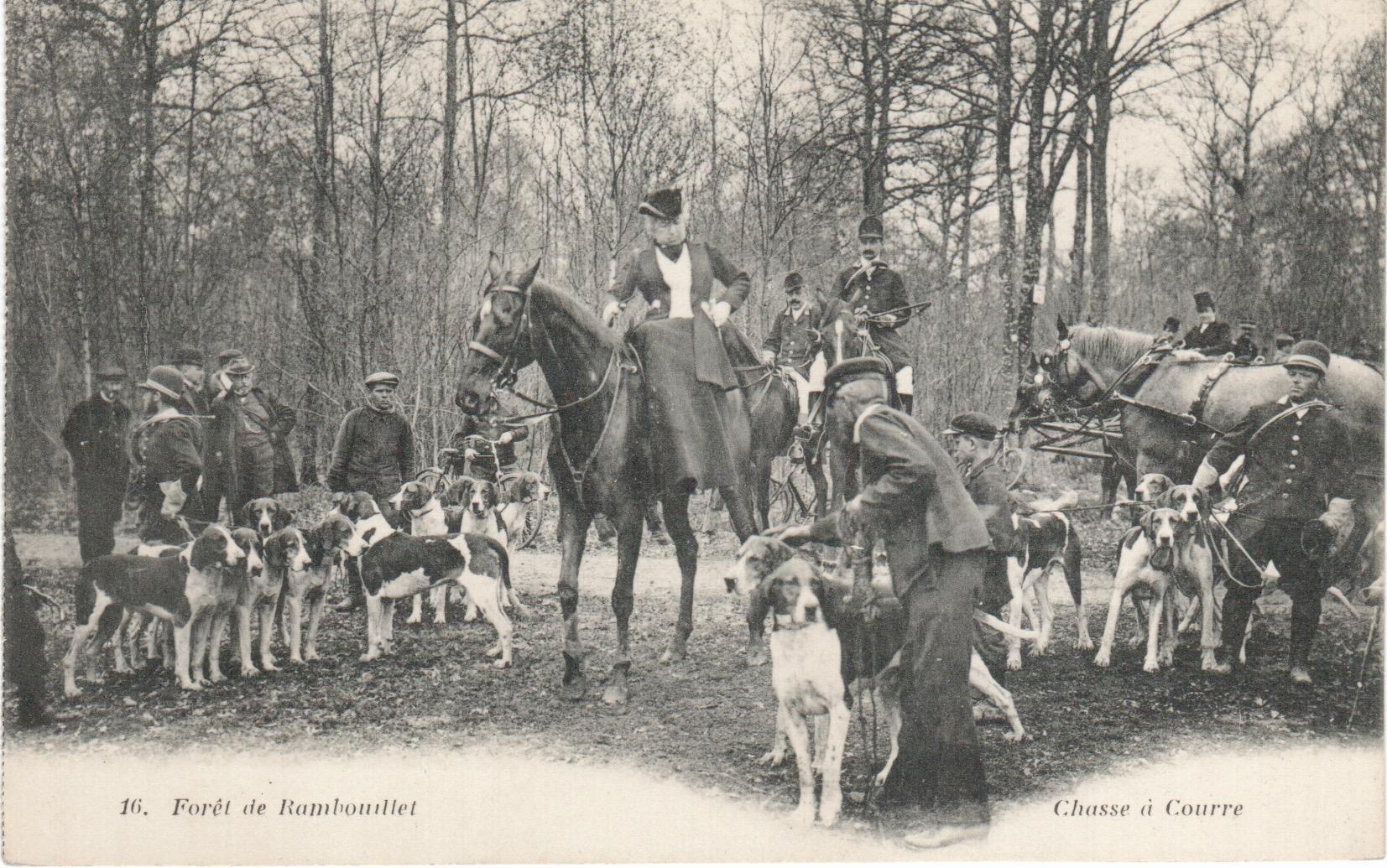 Equipage de Bonnelles Rambouillet (20)