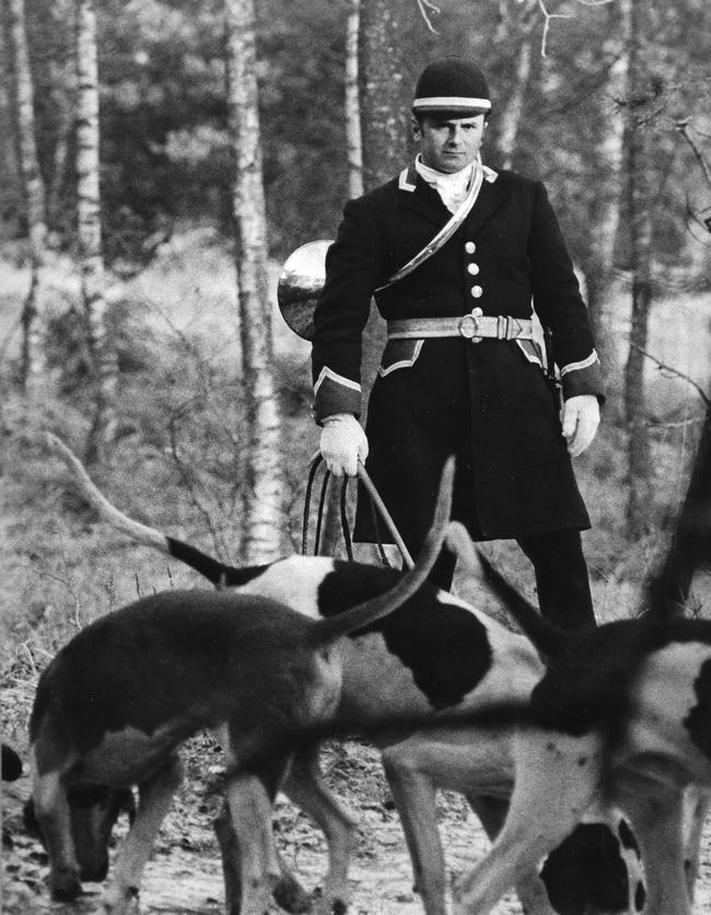 Sainson 1973-1974 - Débûcher (Jacky Naudin) - Photo de Georges Hallo - Don de M. J.-G. Hallo à la Société de Vènerie