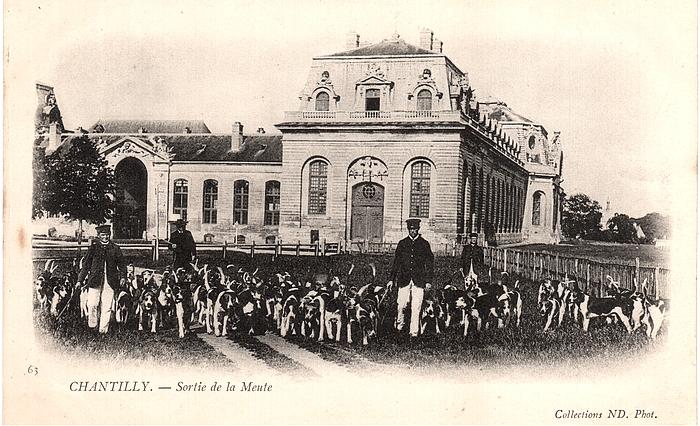 Equipage de Chantilly - Leduc (33)