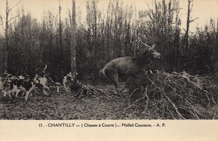 © Collection Claude Alphonse Leduc - Château de Montpoupon - Hallali à l'Équipage de Chantilly