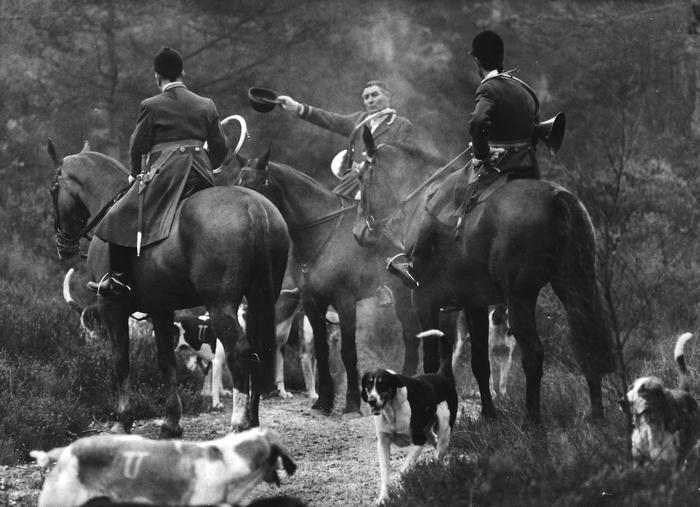 Saison 1967-1968 - Bonnelles - Photo de Georges Hallo - Don de M. J.-G. Hallo à la Société de Vènerie
