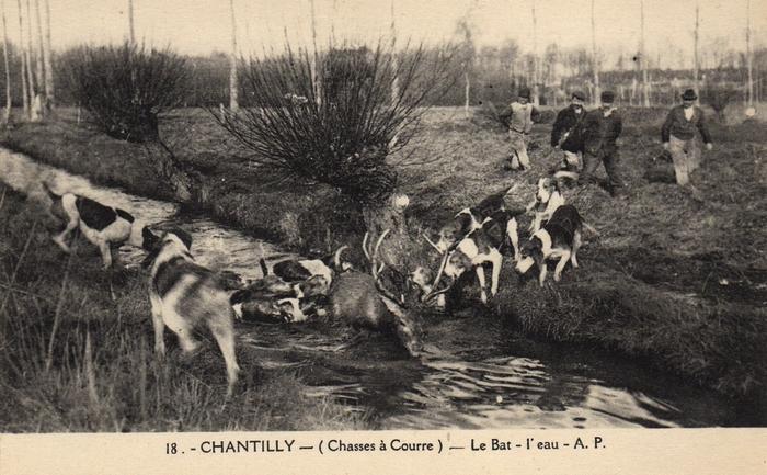 © Collection Claude Alphonse Leduc - Château de Montpoupon - Hallali à l'Équipage de Chantilly (2)