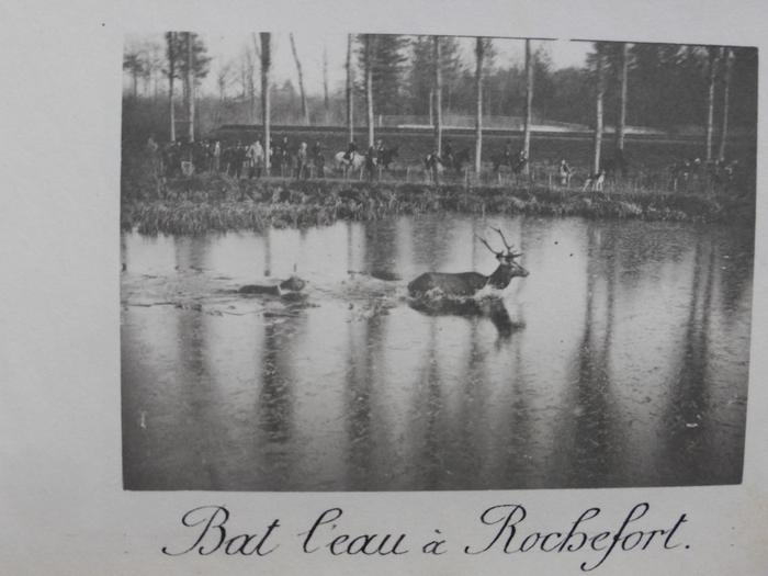 Equipage de Bonnelles - 1880 - 1900 (14)