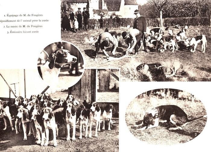Dans le Cher en mars (1925) - Rallie Saint-Hubert, Equipage Beauchamps, Equipage de Chandaire - Don à la Société de Vènerie (3)