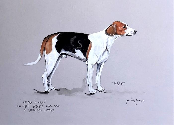 Perray, chien de l'Equipage Servant par Jean-Pierre Boitard - Don de l'artiste à la Société de Vènerie