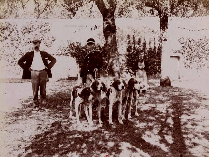 Piqu'Hardy - Tiré de l'ouvrage L'Equipage du marquis de Chambray - Photos de Maurice de Gasté (1894) - Bnf (Gallica)