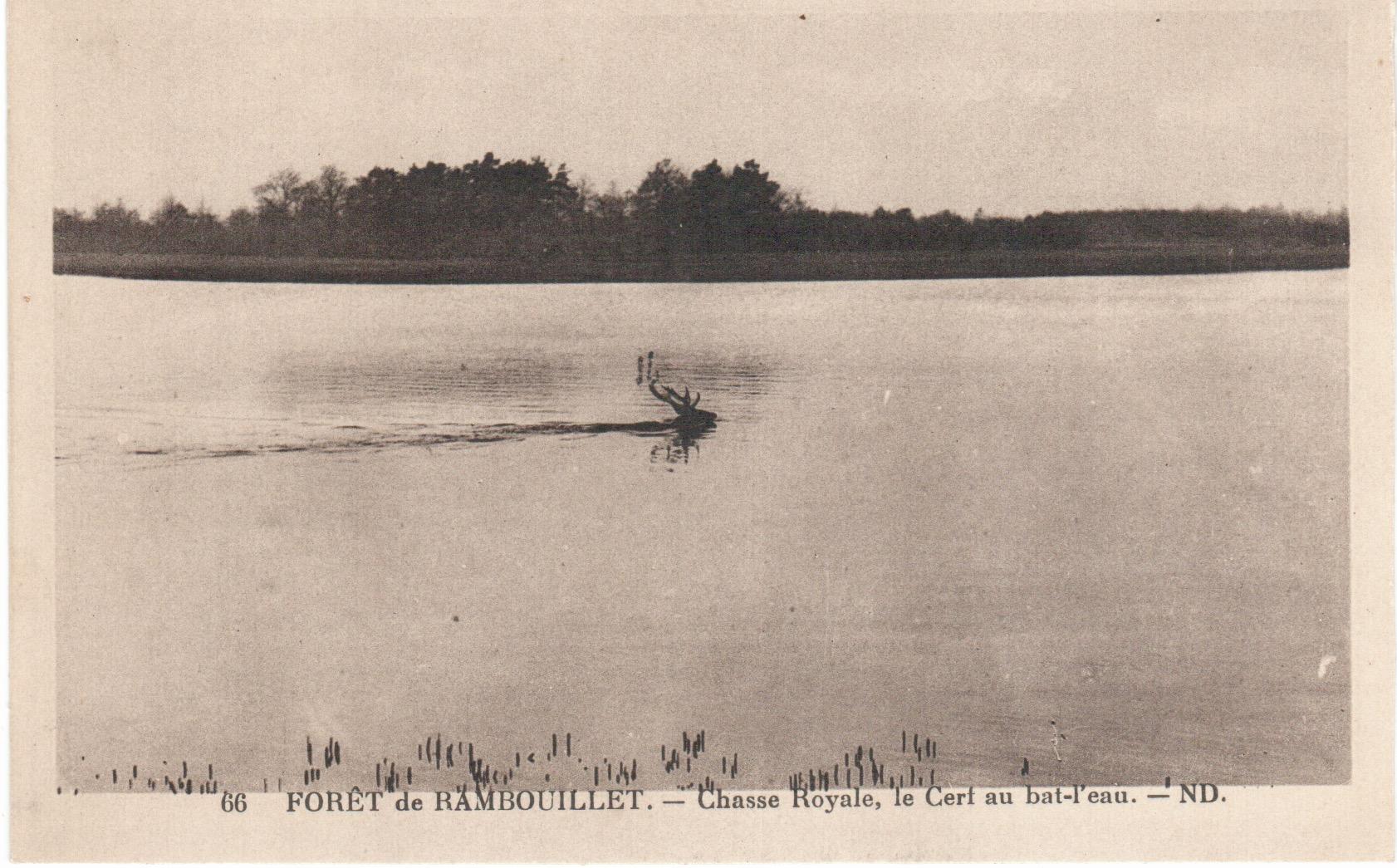 Equipage de Bonnelles Rambouillet (22)