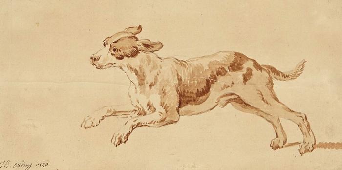 Chien de chasse par Jean-Baptiste Oudry (XVIIIe siècle) - Reproduction - Don à la Société de Vènerie