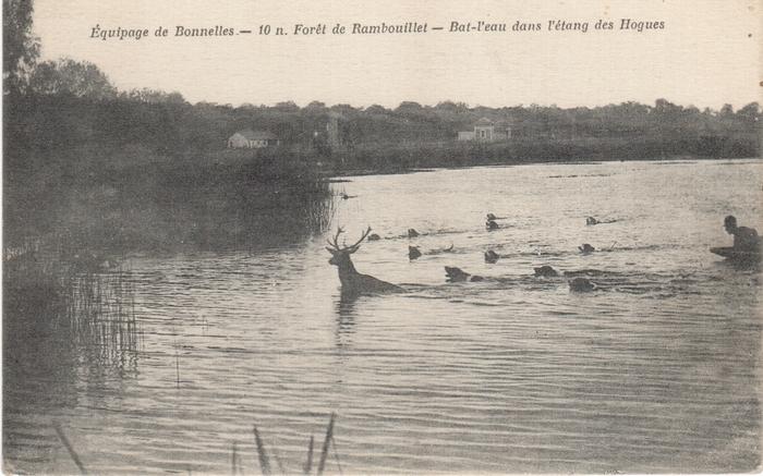 Equipage de Bonnelles Rambouillet (43)