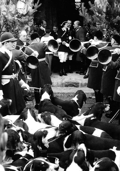 7 novembre 1964 - Saint-Hubert - Photo de Georges Hallo - Don de M. J.-G. Hallo à la Société de Vènerie