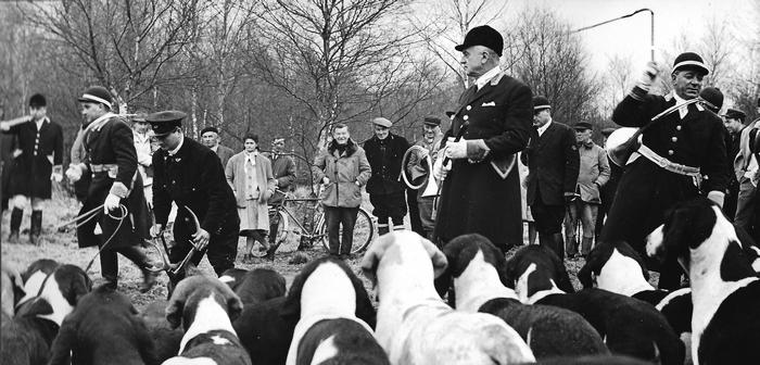 Saison 1960-1961 - Le balancer - Photo de Georges Hallo - Don de M. J.-G. Hallo à la Société de Vènerie