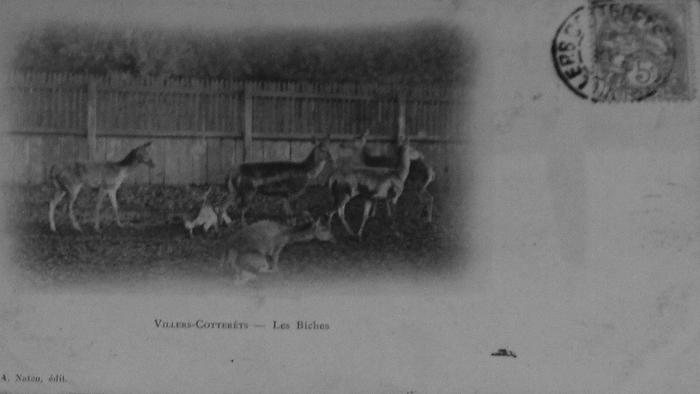 L'Equipage Menier - Collection A.-P. Baudesson - Don à la Société de Vènerie - 495