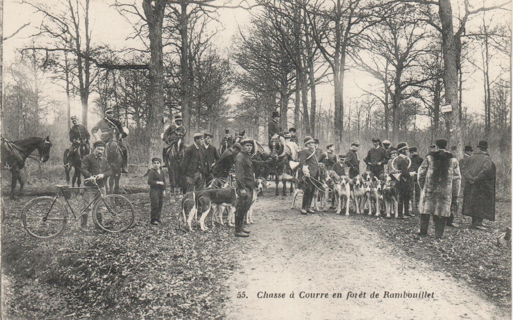 Equipage de Bonnelles Rambouillet (30)