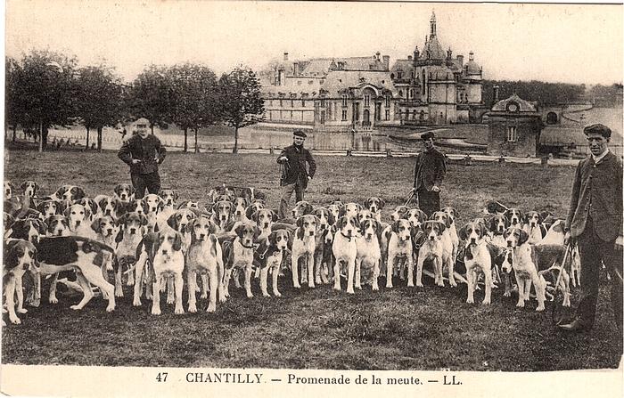 Equipage de Chantilly - Leduc (32)