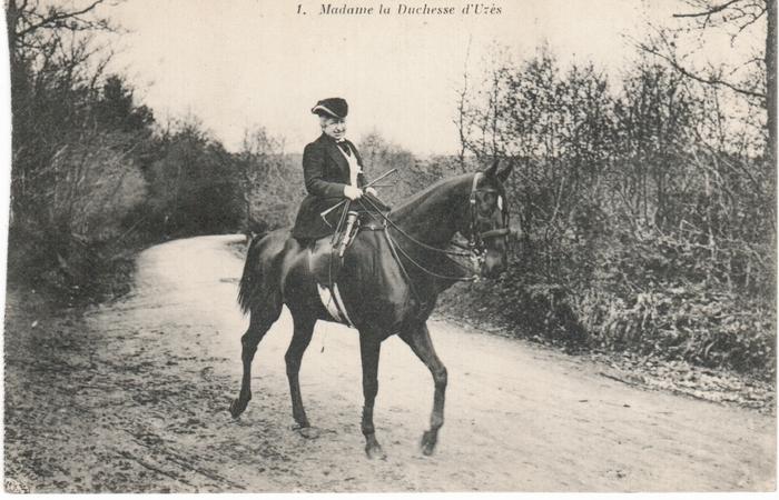 Equipage de Bonnelles Rambouillet (6)