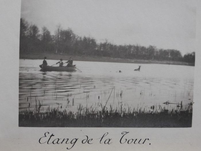 Equipage de Bonnelles - 1880 - 1900 (15)