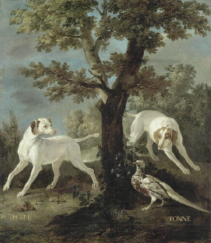 Perle et Ponne, chiennes de la meute de Louis XV - Vers 1732 © Joconde - RMN - Fontainebleau - Musée du château - Gérard Bonnet