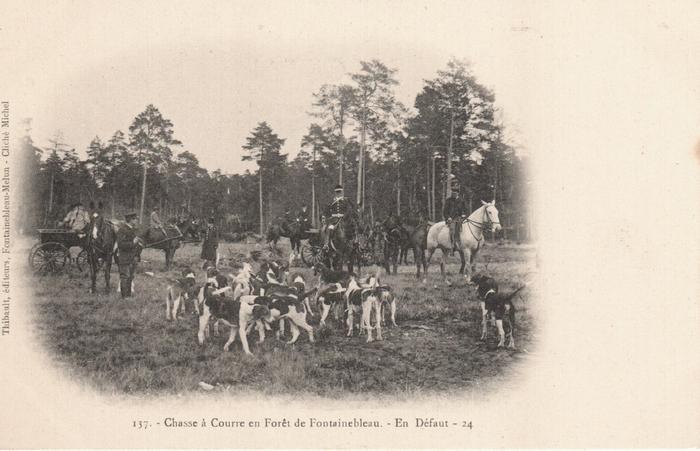 Fontainebleau (11)