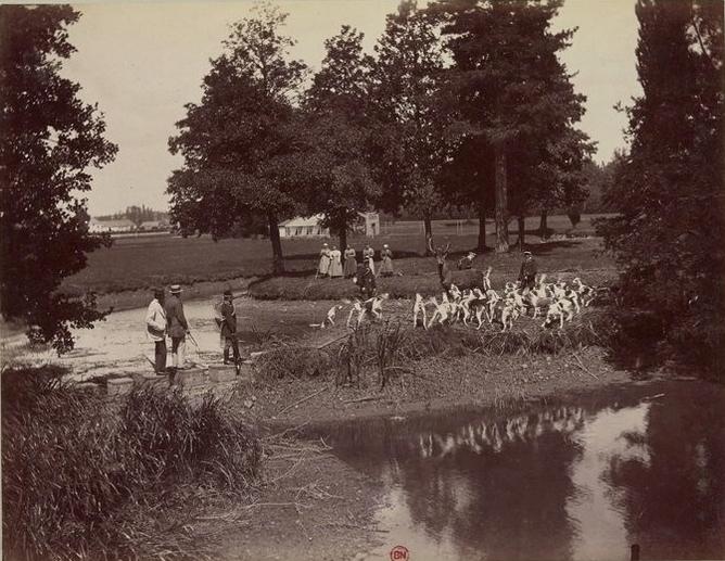 Hallali mes beaux ! - Tiré de l'ouvrage L'Equipage du marquis de Chambray - Photos de Maurice de Gasté (1894) - Bnf (Gallica)