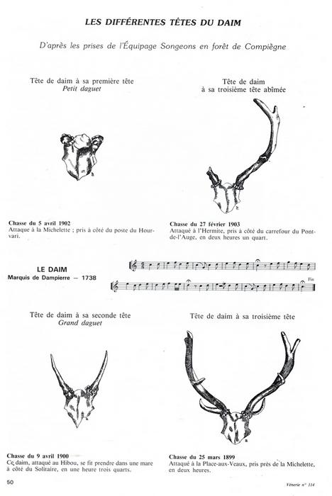 Prises de l'Equipage Songeons en forêt de Compiègne - Vènerie n°114 - 1994 1/2