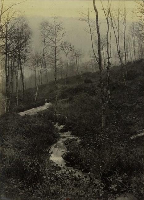 Pierre-Chien - Tiré de l'ouvrage L'Equipage du marquis de Chambray - Photos de Maurice de Gasté (1894) - Bnf (Gallica)