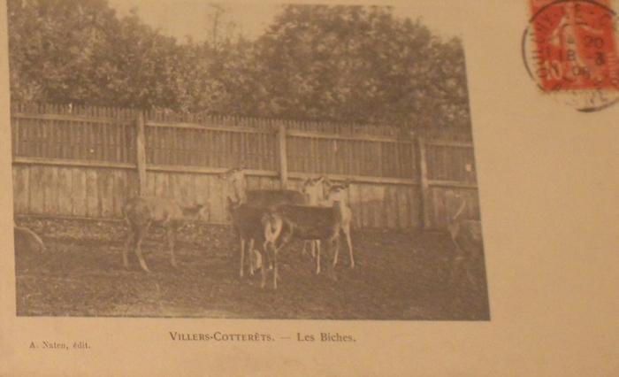 L'Equipage Menier - Collection A.-P. Baudesson - Don à la Société de Vènerie - 499