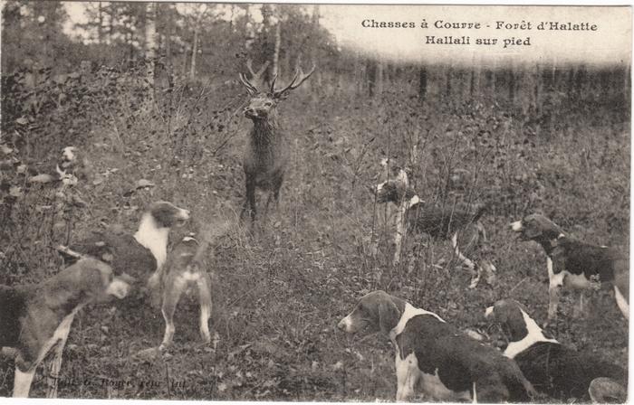 Cartes postales Claude Alphonse Leduc (6)