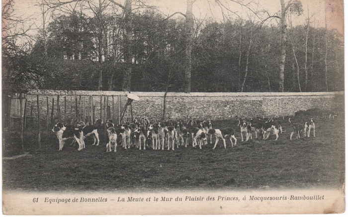 Equipage de Bonnelles Rambouillet (15)