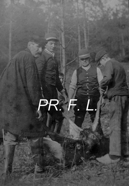 Equipage de Fontaine-Henri - Don de M. F. Longuet à la Société de Vènerie - 5
