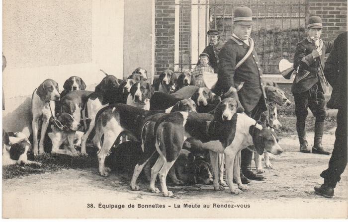 Equipage de Bonnelles Rambouillet (16)