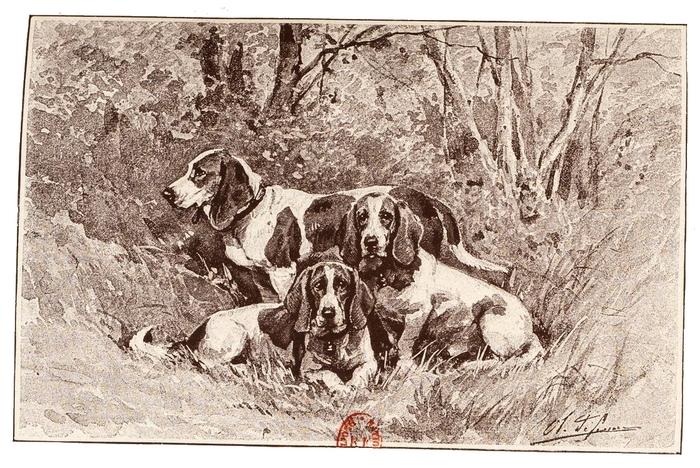 Illustration tirée du Manuel de Vènerie française - Emmanuel Le Couteulx de Canteleu (1890) - Hachette et Cie (Paris) - BnF (Gallica) (7)