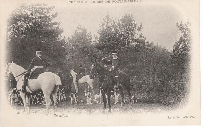 Fontainebleau (12)