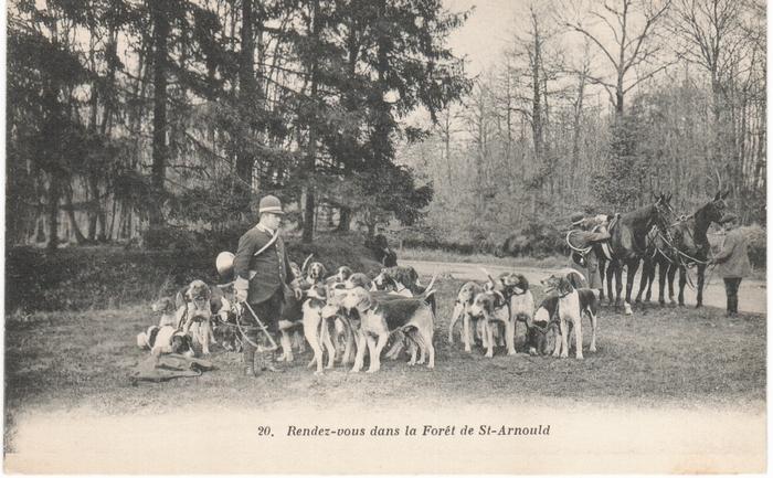 Equipage de Bonnelles Rambouillet (17)