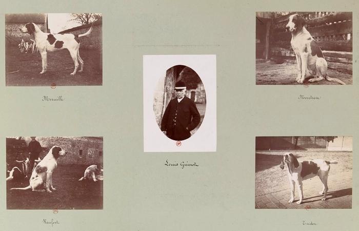 Louis Guinot et Merveille, Renfort, Montrose, Tudor - Tiré de l'ouvrage L'Equipage du marquis de Chambray - Photos de Maurice de Gasté (1894) - Bnf (G