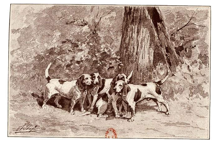 Illustration tirée du Manuel de Vènerie française - Emmanuel Le Couteulx de Canteleu (1890) - Hachette et Cie (Paris) - BnF (Gallica) (9)
