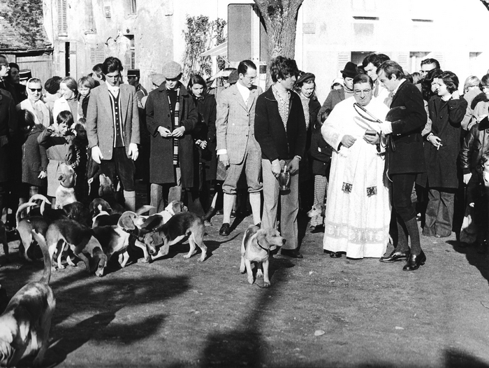 10 novembre 1974 - Saint-Hubert - Rallye Hardi Beagles - Photo de Georges Hallo - Don de M. J.-G. Hallo à la Société de Vènerie