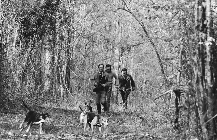 7 mars 1982 - Rallye des Grands Loups - Photo de Georges Hallo - Don de M. J.-G. Hallo à la Société de Vènerie