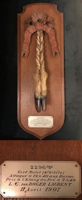 Pris en 1907 par l'Equipage Chambray - Don de M. Y. de Meynard à la Société de Vènerie