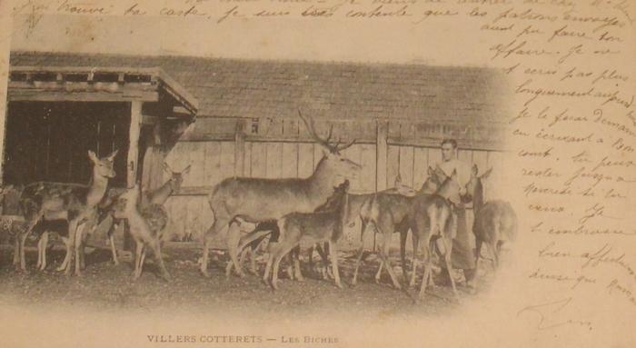 L'Equipage Menier - Collection A.-P. Baudesson - Don à la Société de Vènerie - 497