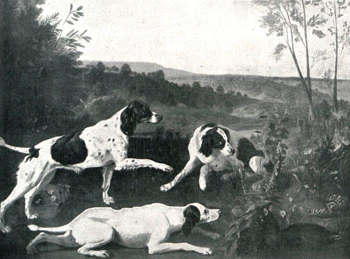 Bonne, Ponne et Nonne, chiennes de la meute du roi - Illustration tirée de l'ouvrage La Chasse à travers les Âges - Comte de Chabot (1898) - A. Savaèt