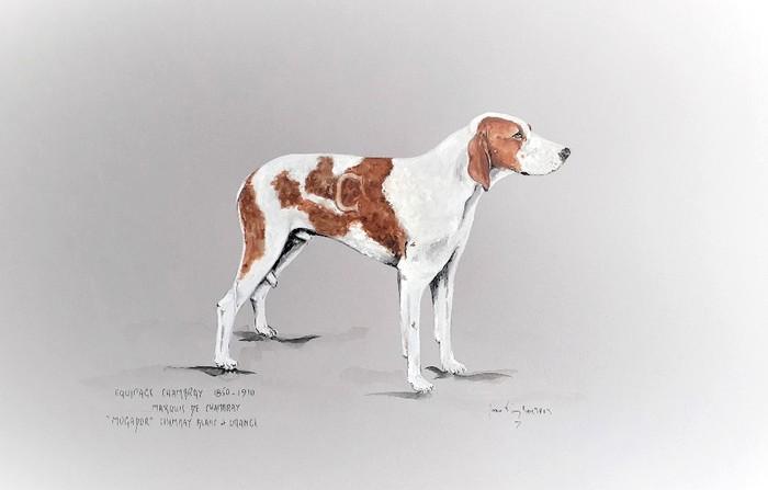 Mogador, chien Chambray par Jean-Pierre Boitard - Don de l'artiste à la Société de Vènerie