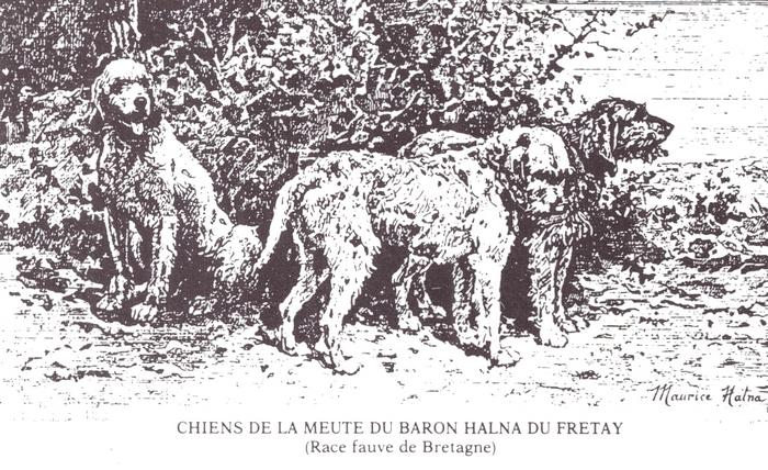 Equipage Halna du Fretay - Illustration tirée de l'ouvrage Deux Siècles de Vènerie à travers la France - H. Tremblot de la Croix et B. Tollu (1988)