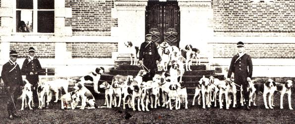 La meute - Tiré de l'ouvrage L'Equipage du marquis de Chambray - Photos de Maurice de Gasté (1894) - Bnf (Gallica)