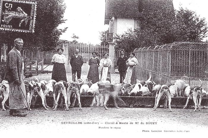 Equipage de Voulaines - Tiré de l'ouvrage Deux Siècles de Vènerie à travers la France - H. Tremblot de la Croix et B. Tollu (1988)